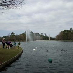 George Bush Park User Photo