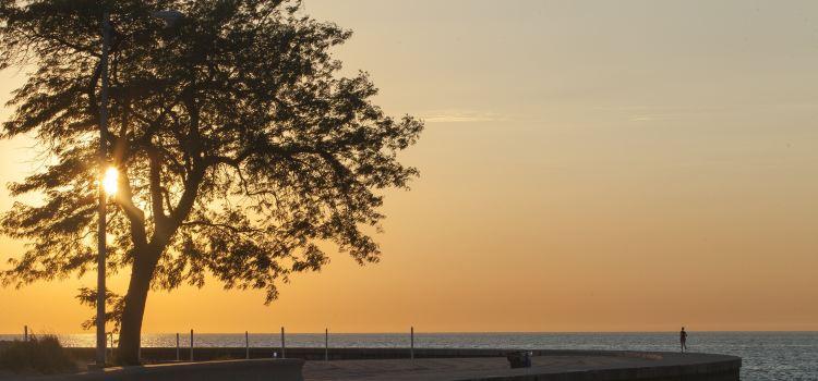 Oak Street Beach1