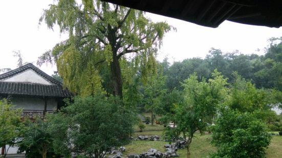 靈山石樹景區
