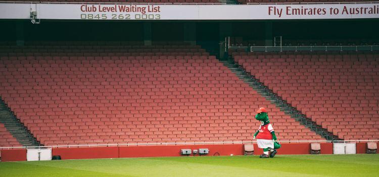 Emirates Stadium1