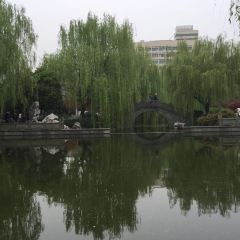 Jiangsi Park User Photo