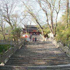 滁州琅琊古刹用戶圖片