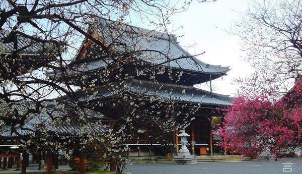 Koshoji Temple3