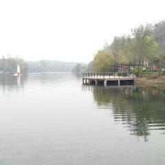 洞林湖用戶圖片