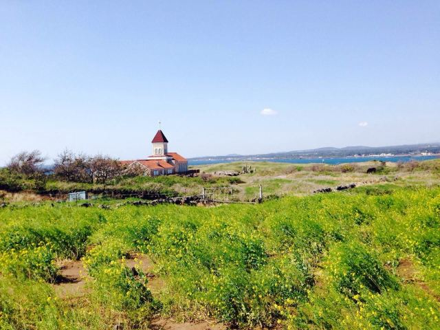 濟州島四季之美