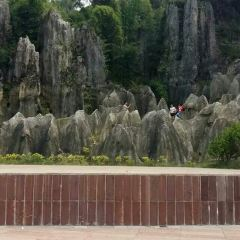 Sinan Stone Forest Tourist Area User Photo