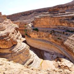 Tamerza Canyon User Photo
