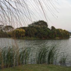 碧湖生態公園用戶圖片