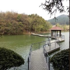 Zhongnan Baicao Garden User Photo
