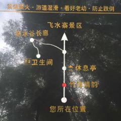 Feishuizhai Scenic Area User Photo