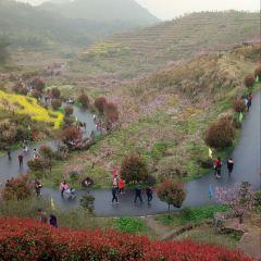 Yangshanfancun User Photo