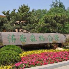Huaiyin Park User Photo