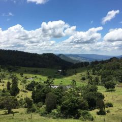Lamington National Park User Photo