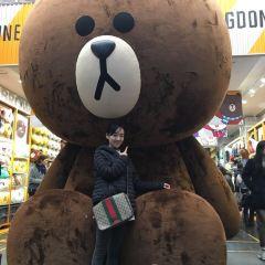 한국의 집 여행 사진