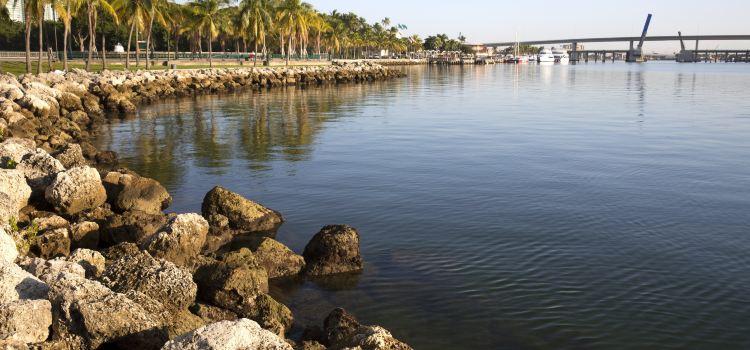 Bayfront Park2