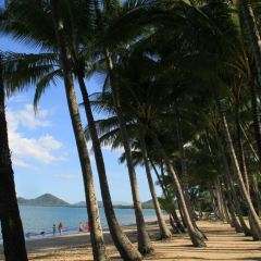 Palm Cove User Photo