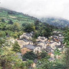 石潭村用戶圖片