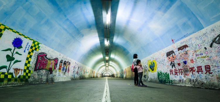 芙蓉隧道1