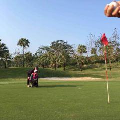 五邑蒲葵高爾夫球會用戶圖片
