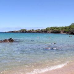 Waialea Beach User Photo