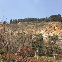 龜山景區用戶圖片