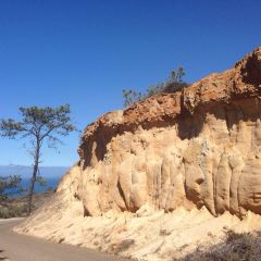 Torrey Pines State Natural Reserve User Photo
