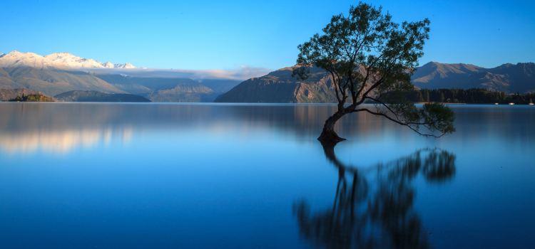 Lake Wanaka3