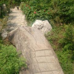 龍澍峪旅遊風景區用戶圖片
