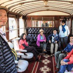 紅蜥蜴列車用戶圖片