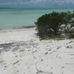 Deadman's Cay Caves User Photo