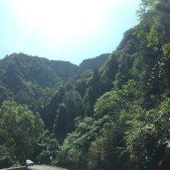 단주 휴양 계곡 여행 사진