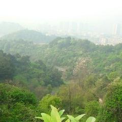婁底新化獅子山公園用戶圖片