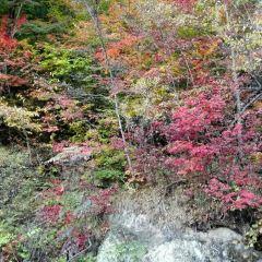 오녀봉국립산림공원 여행 사진