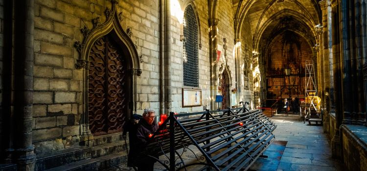 Barcelona Cathedral3
