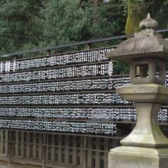 吉田神社用戶圖片