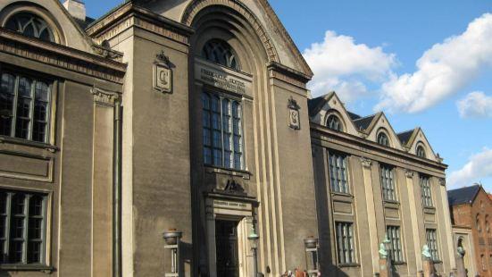 Copenhagen University (Kobenhavns Universitet)