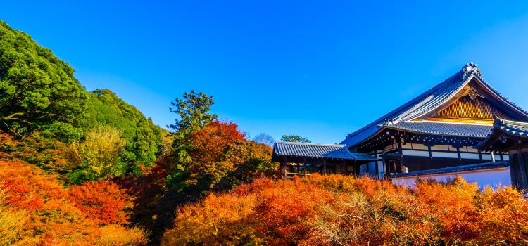 Tofukuji Temple3