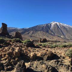 Teide National Park User Photo