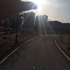 仕奇公園用戶圖片