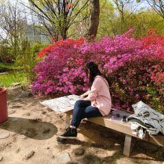 홍익대학교 여행 사진
