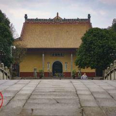 開福寺用戶圖片