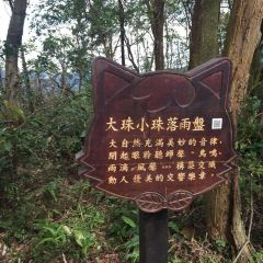 Maokong User Photo