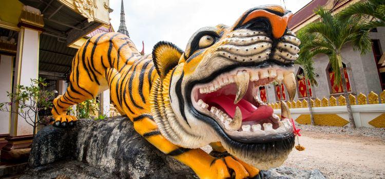 Tiger Cave Temple3