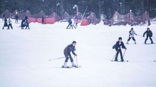 大明山萬松嶺滑雪場