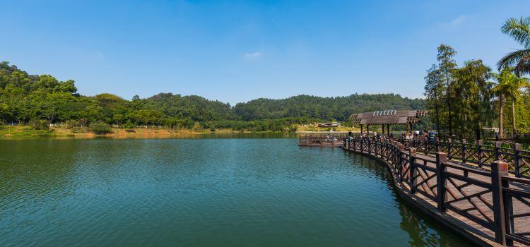 Dafu Mountain Forest Park1