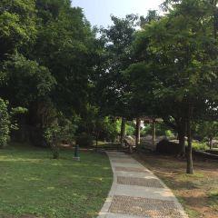 虎門公園用戶圖片