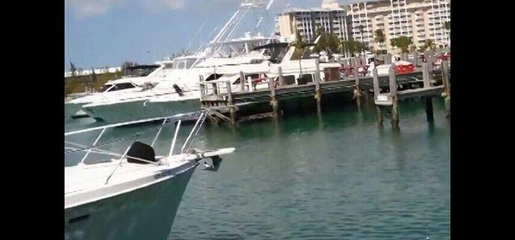 Port Lucaya Marina2