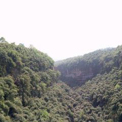 대나무 협곡 풍경명승구(진지계곡) 여행 사진
