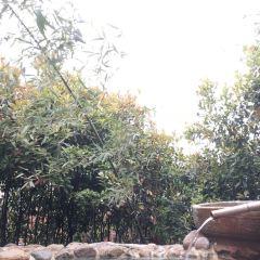 관탕 온천 여행 사진