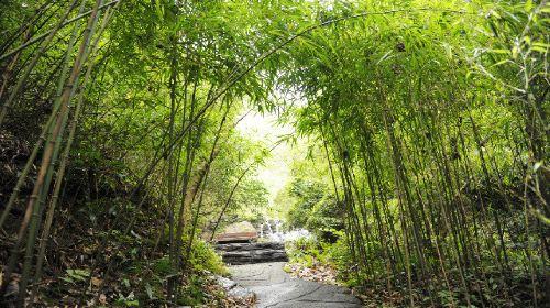 雙龍生態旅遊度假區